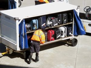 airline baggage carrier